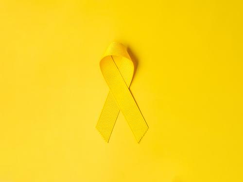 Setembro Amarelo. Sobre o Suicídio.